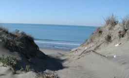 Fase2, Marchetti (FI): «Non tutta la costa è uguale, serve un lavoro su misura per il territorio»