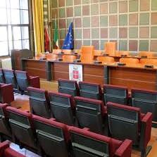 Consiglio Comunale Pisa: telecamere, stalli blu, fideiussioni e tassisti