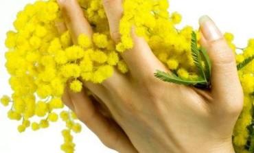La Casa di Cura San Rossore dedica il mese di marzo alla salute femminile con visite senologiche gratuite