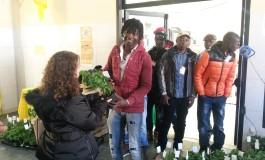 Il primo mercato agricolo dei migranti d'Italia