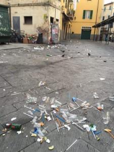 pulizie_zona_cavalieri