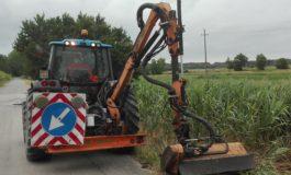 Pisa, operai in azione per il taglio dell'erba ai lati delle strade