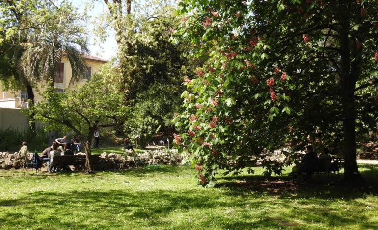 """Pisa, al via """"Domeniche al verde"""" aperture gratuite dell'Orto e del Museo botanico"""