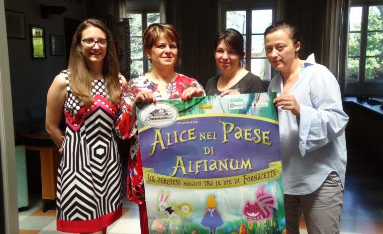"""""""Alice nel Paese di Alfianum"""": Brucaliffo e fiori parlanti nella magica notte del Centro Commerciale Naturale di Fornacette"""