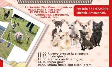 Pisa, a Porta a Mare il Mega Party dedicato ai cani di piccola taglia