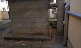"""Latrofa (Pisa nel Cuore): """"Degrado e pericolo alla scuola Zerboglio di Pisa"""""""