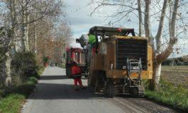 Iniziata la riasfaltatura di via Le Rene a Coltano