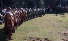 Nella tenuta di San Rossore la tradizionale cavalcata di Sant'Antonio Abate