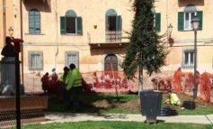 Pisa, Piazza Cavallotti si fa bella per la primavera