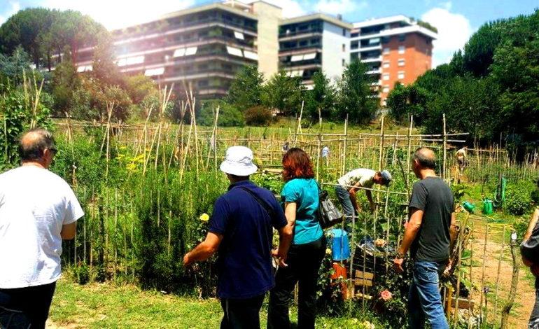 Pisa, i cittadini di Ortipisani recuperano un altro terreno abbandonato
