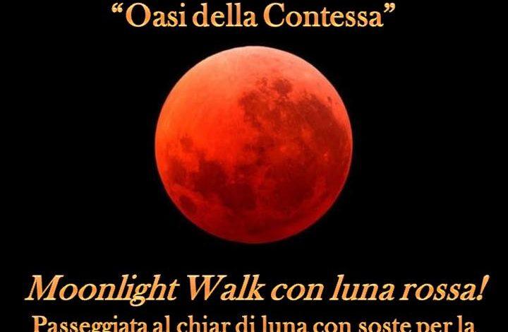 Venerdì 27 luglio Moonlight Walk con Luna Rossa alla Riserva Oasi della Contessa