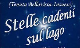 """Sabato 11 agosto torna """"Stelle cadenti sul Lago"""""""