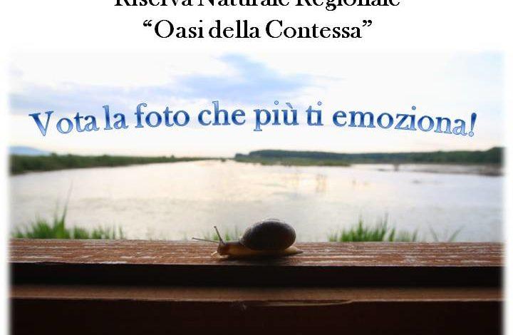 """GAIA organizza il 1° Nature Photo Contest """"Emozioni di Natura"""""""