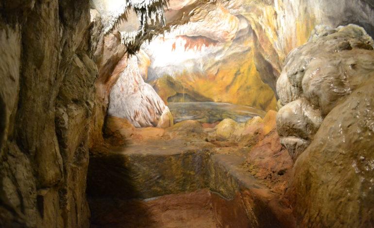 """Museo di Storia Naturale: inaugurazione del nuovo allestimento """"Grotta del Leone, l'uomo preistorico sul Monte Pisano"""""""