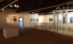 """Mostra di Ozmo alla Cittadella, gli organizzatori: """"Abbiamo fatto un miracolo"""""""