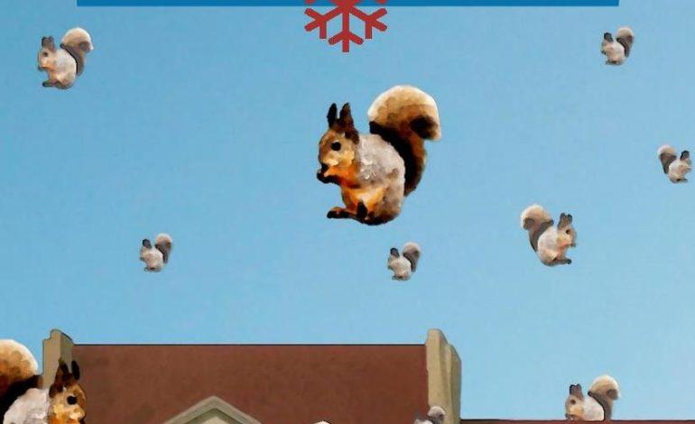 """""""Piovono scoiattoli"""" il nuovo libro di Giuanluca Ciuffardi"""