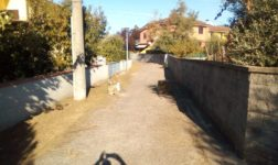 Calcinaia, interventi di manutenzione sulle strade