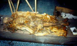 Gli insetti svelano il segreto della sepoltura di Re Ferrante II di Aragona