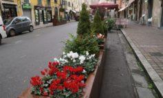 Decoro urbano, installate le nuove fioriere in Borgo Largo