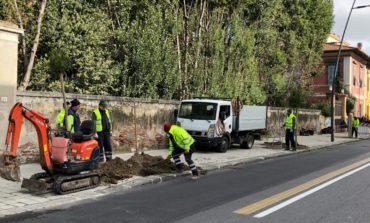 Verde urbano, in corso piantumazioni e installazione di nuove fioriere