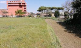 Un ettaro di terreno, per il nuovo Bioparco di Cascina