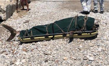 Recuperata a Marina di Pisa carcassa di tonno spiaggiata