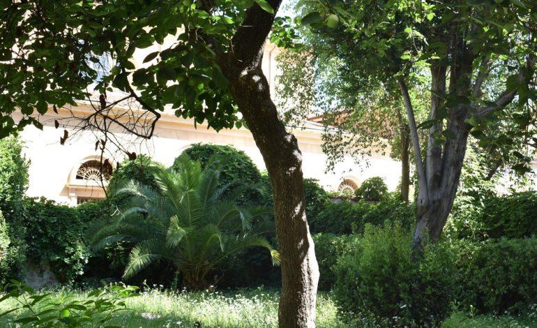 Giornata nazionale degli alberi, a Pisa si piantano 100 nuovi alberi