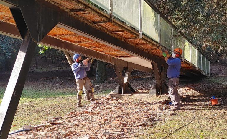 Parco di Migliarino San Rossore Massaciuccoli: lavori in corso per 1,3 milioni di euro