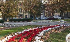 Pisa, allestite le fioriture autunnali nelle principali piazze e aree verdi della città