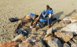 Pisa aderisce a 'Il mare d'inverno' per ripulire le spiagge dalla plastica