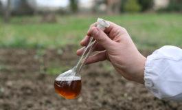 Le virtù del distillato di legno per aumentare la fertilità del terreno