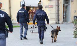 Polizia Municipale, sequestro di droga in via Benedetto Croce