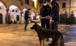 Polizia Municipale arresta spacciatore in Vettovaglie