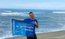 Tartaruga: ecco il tratto di spiaggia di San Rossore idoneo alla nidificazione