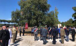 Intitolata rotatoria ad Anna Frank nel Giorno della Memoria organizzato dal Comune di Pisa
