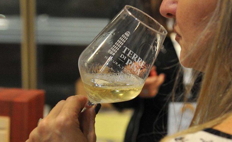 Torna a Pisa il Terre di Pisa Food & Wine Festival